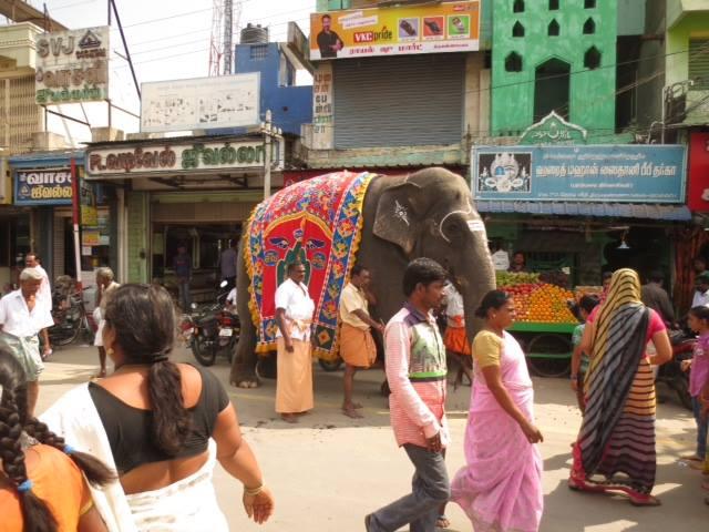 strada con persone e elefante